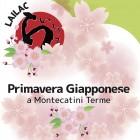 PrimaveraG-Q-351337_140x140