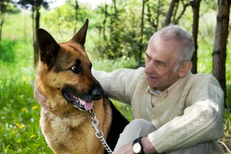 Senior man who is talking with his dog in park.